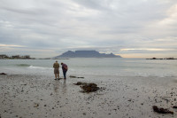 Table Mountain from Big Bay [1303314901]