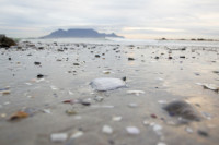 Table Mountain from Big Bay [1303314903]
