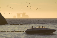 Speedboat and birds at sunset [1304055148]