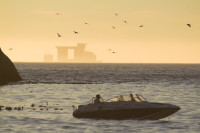 Speedboat and birds at sunset [1304055149]