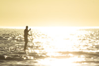 Stand Up Paddle Surfing at sunset [1304125352]