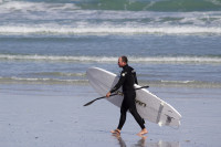 SUP surfer on the beach [1309227219]