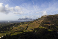 Hills, mountains and vineyards of Constantia [1309247296]