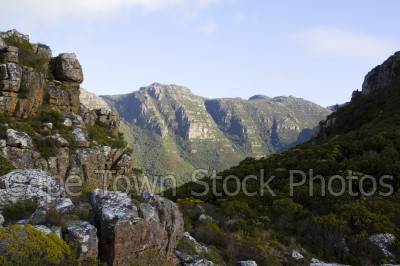 table mountain,landscape,hiking,constantia
