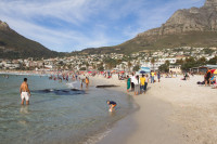 In the water at Camps Bay beach [1310277898]