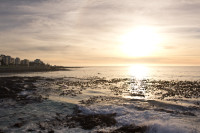 Sunset at Three Anchor Bay in Sea Point [1311018320]