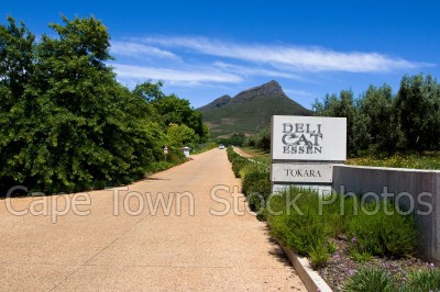 hills,stellenbosch,restaurants,mountains