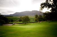 Lawns at Groot Constantia Wine Estate [1312289657]
