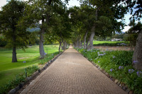 Walkway at Groot Constantia Wine Estate [1312289659]