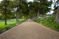 Walkway at Groot Constantia Wine Estate [1312289660]