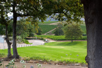 Lawns at Groot Constantia Wine Estate [1312289665]