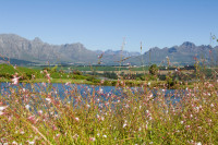 Stellenbosch and Boland Mountains from Asara [1401029806]