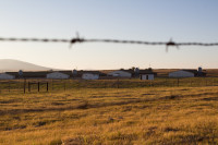 Farms barbed wire fence in Durbanville [1401039847]