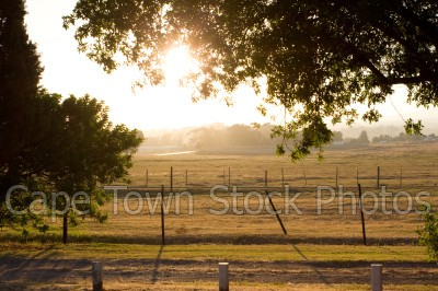 sunset,countryside,farm,durbanville