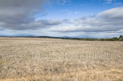 blue sky,durbanville,farmlands,cloudy,barren