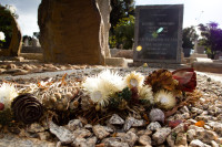 Dried flowers on a grave [1403230809]