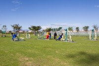 Outdoor Gym at Khayelitsha Wetlands Park [1506060311]