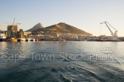harbour,signal hill,lions head