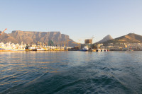 Cruise from the V&A Waterfront  [1507030569]