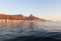 Sunset cruise from the V&A Waterfront  [1507030611]