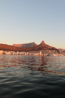 Sunset cruise from the V&A Waterfront  [1507030627]