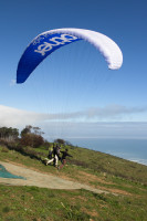 Paragliding from Signal Hill [1508080756]