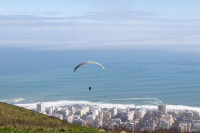 Paragliding from Signal Hill [1508080773]