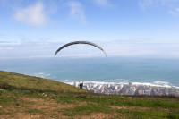 Paragliding from Signal Hill [1508080794]