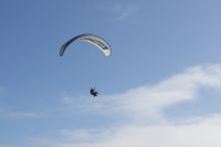 Paragliding from Signal Hill [1508080799]