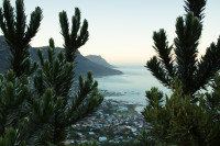 Morning Camps Bay from Lion's Head [1512183458]