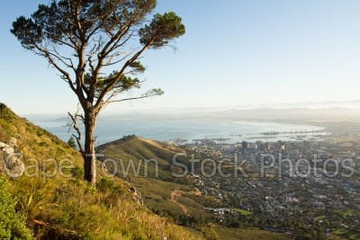 city,lions head,hiking