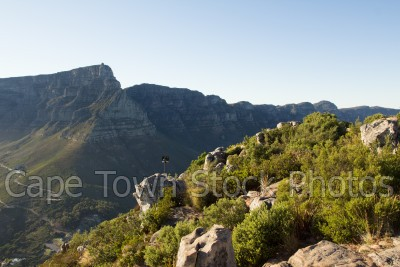 lions head,table mountain,hiking