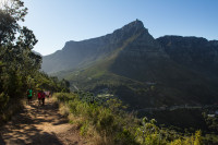 Table Mountain from Lion's Head hiking trail [1512183530]